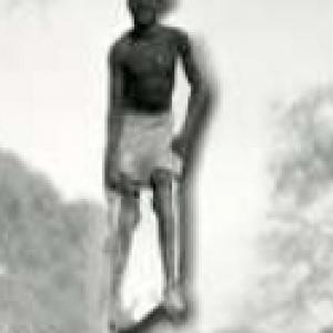 Angolan Natural History